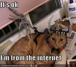 funny-pictures-cat-from-the-internet